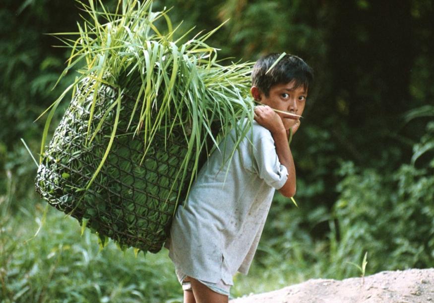 Crédit photo © international labour organization (ilo) - child
