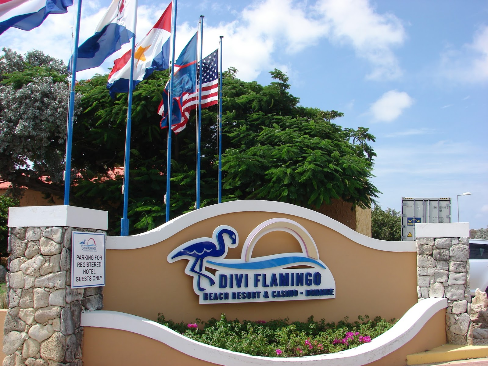 Best Flamingo Rooms