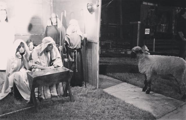 live nativity Holmes St UMC
