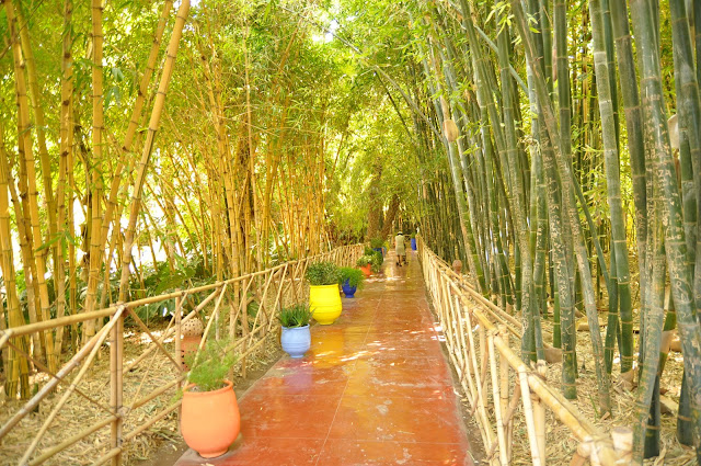 Marrakech Jardin Majorelle garden