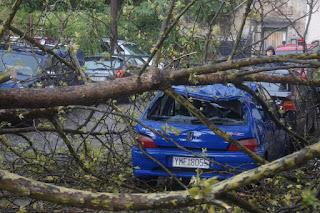 Ζημιές σε αυτοκίνητα από πτώση δέντρου,στην παλιά πόλη των Ιωαννίνων