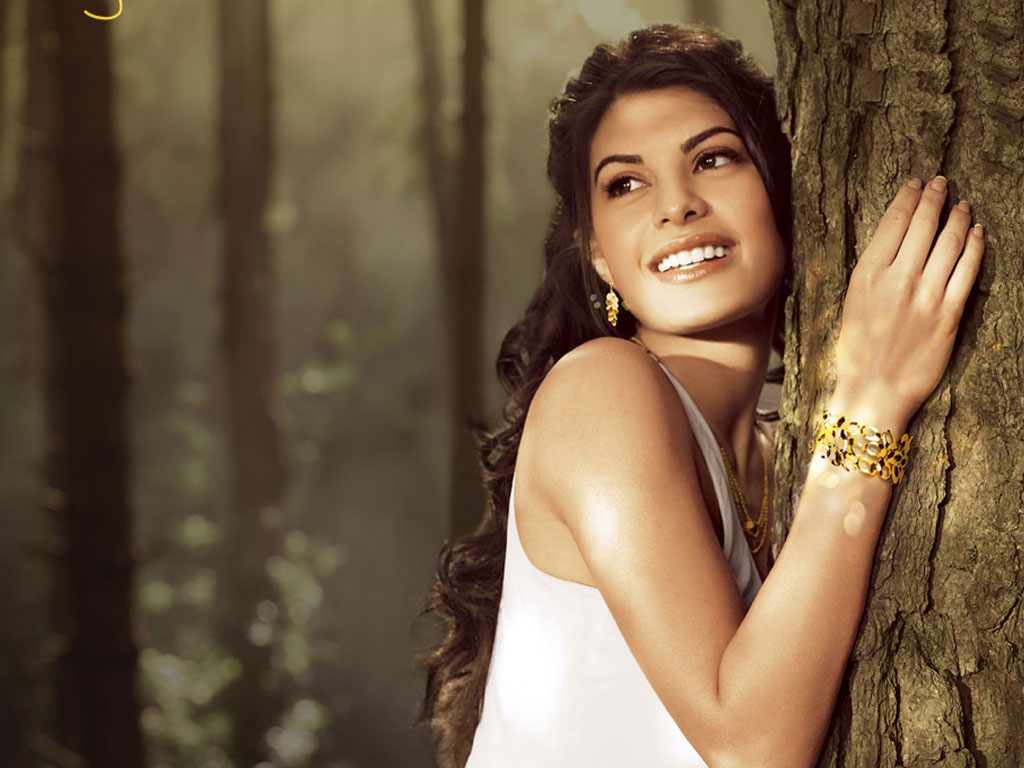 Jacqueline fernandez top less image jacqueline fernandez for Wallpaper for less