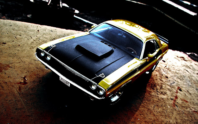Dodge Challenger Seen On www.coolpicturegallery.us