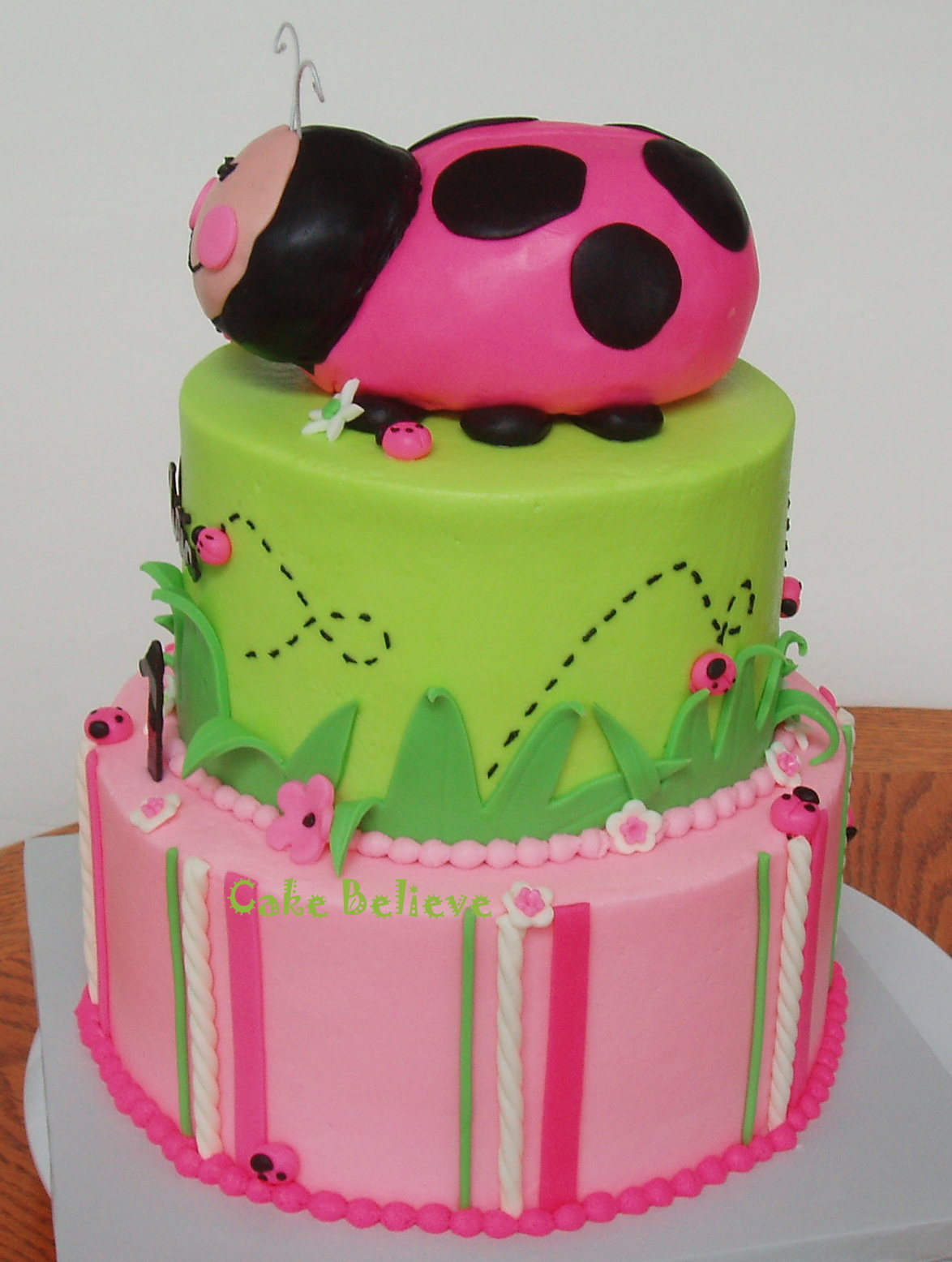 Cake believe oh so sweet ladybug first birthday