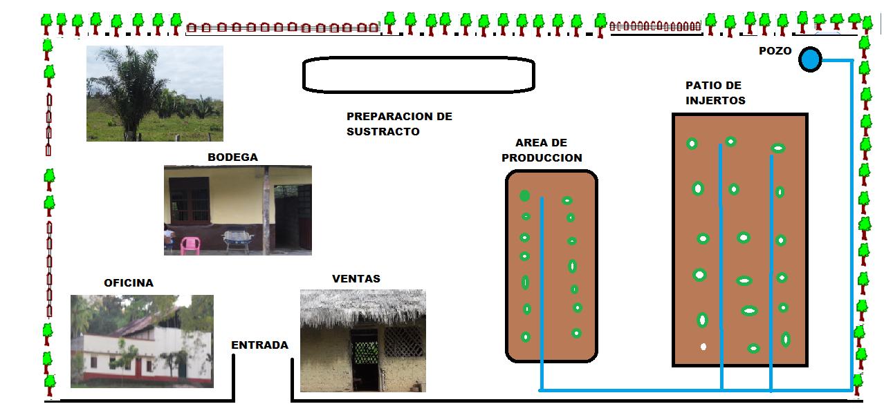 Diferentes tipos y construcci n de viveros for Construccion de viveros forestales