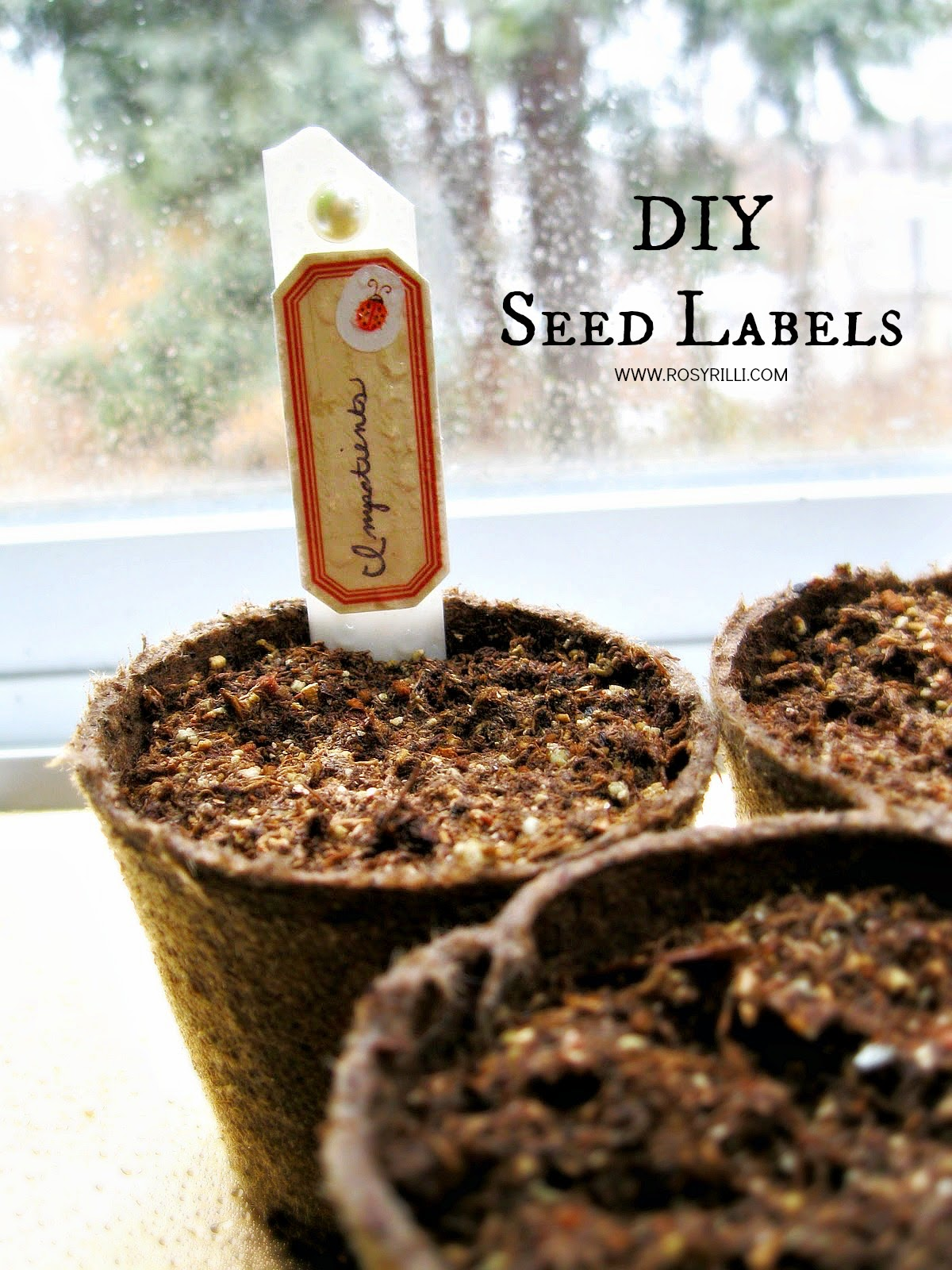 ROSYRILLI.COM DIY seed labels