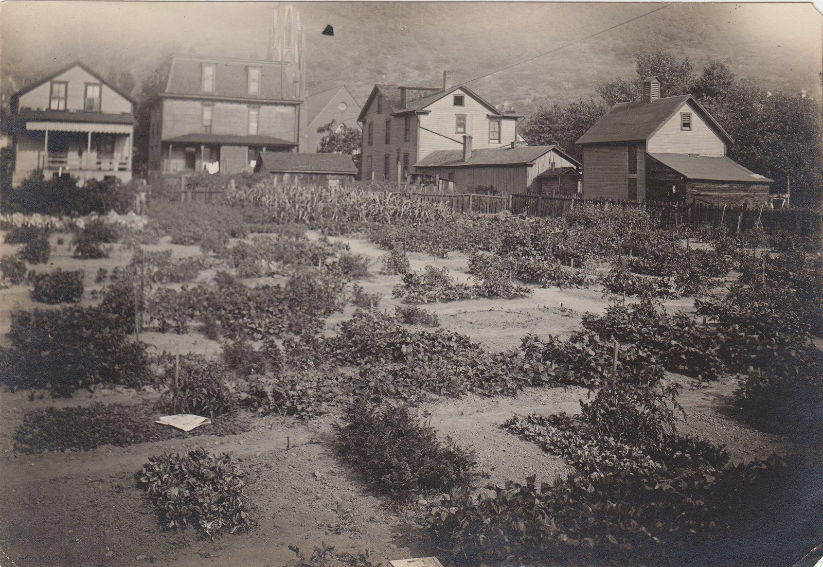 Purpose Of Victory Gardens In Ww1 Garden Ftempo