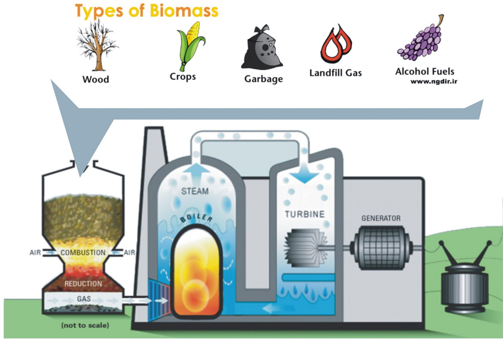 Biomass Energy Diagram For Kids Biomass diagraBiomass Energy Diagram