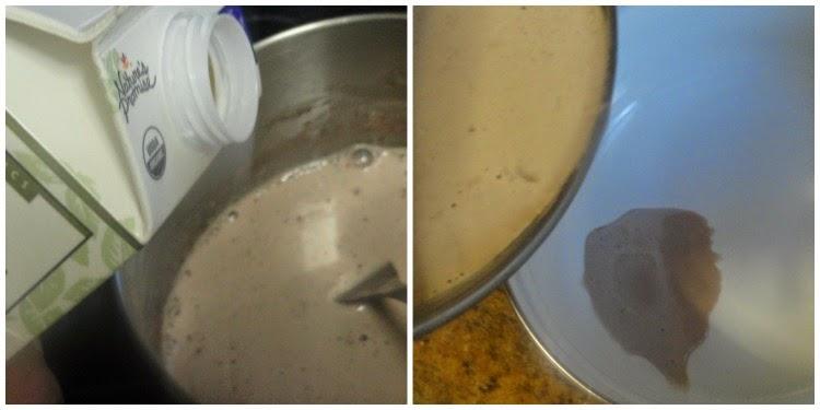 chocolate ice cream5