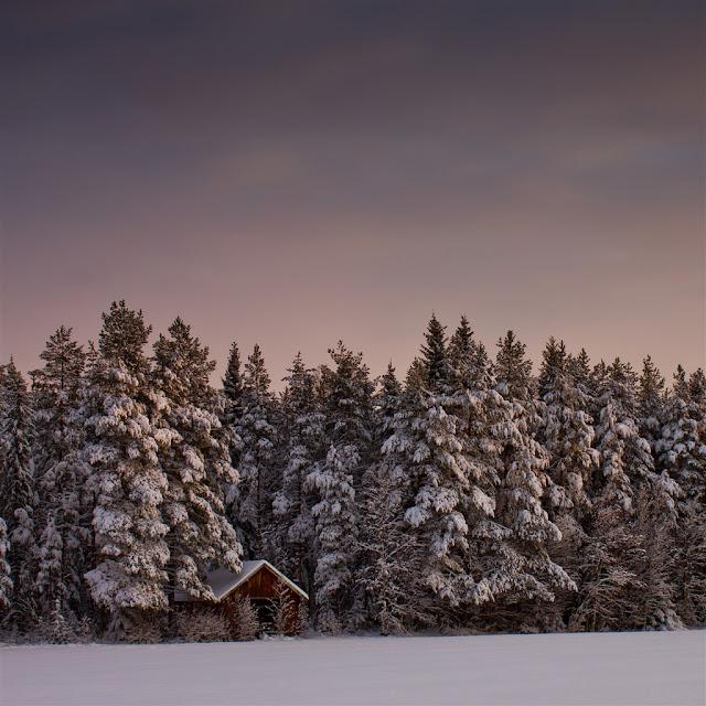 winter ipad wallpaper 6