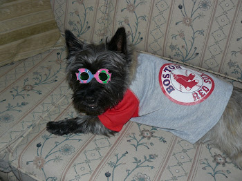 Yes -  PJ Is A Red Sox Fan