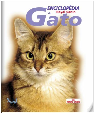 Seja você também um  Expert em Gatos!