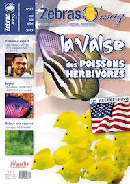 ZebrasO'mag N°41