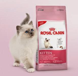 Seleccionados parar probar Royal Canin Kitten