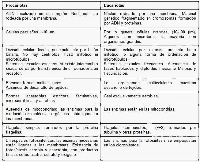 La célula | Apuntes de Bioquímica