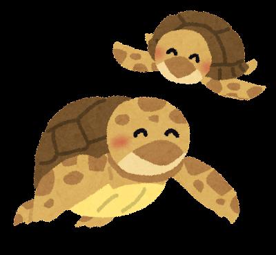 ウミガメの親子のイラスト