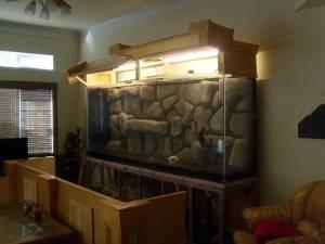 Giant aquariums january 2012 for Fish tanks craigslist