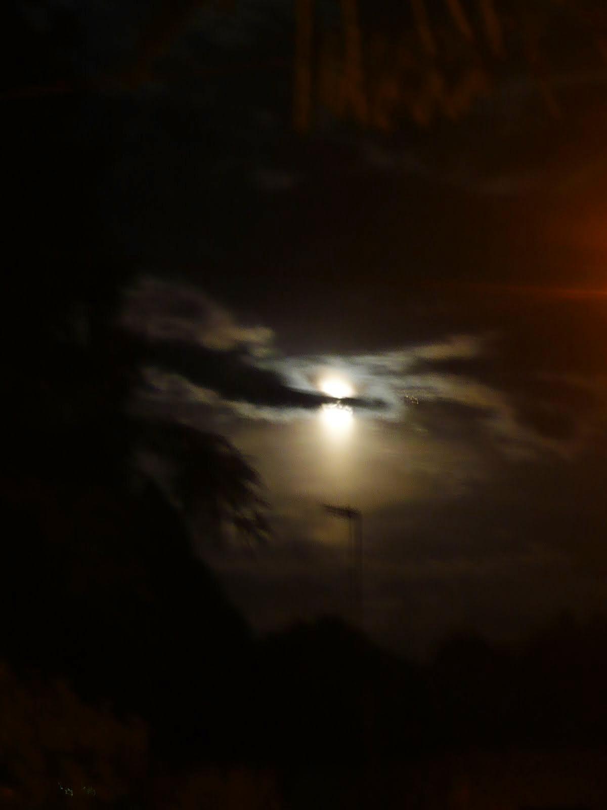 Nocturnidad de El Talar