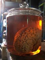 Brain Jar2