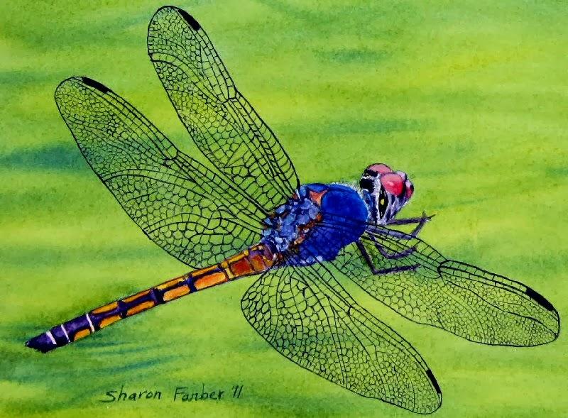 Dragonfly Healing Arts