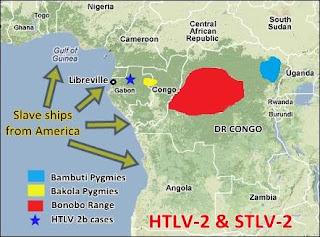 HTLV-2 in Africa