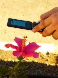 Tecnologia e a natureza