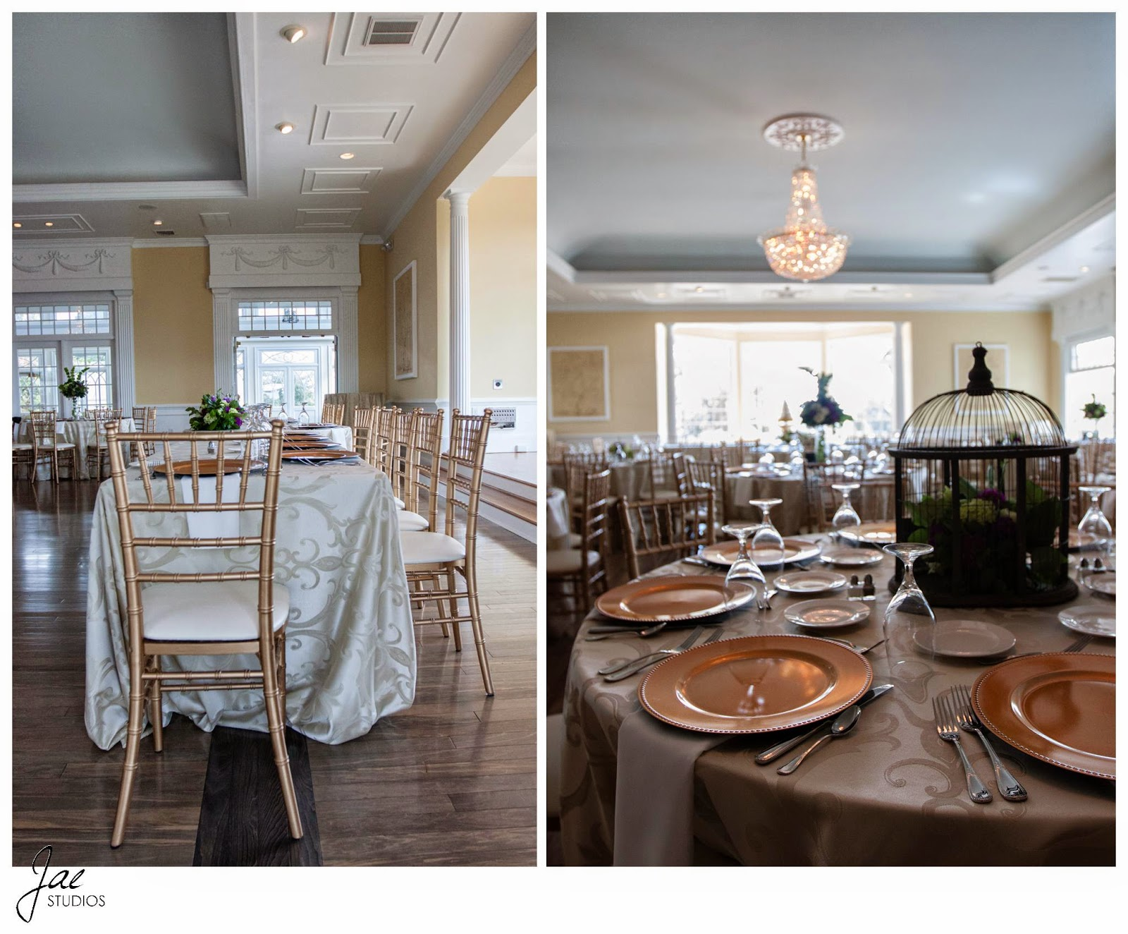 Jonathan and Julie, Bird cage, West Manor Estate, Wedding, Lynchburg, Virginia, Jae Studios, table, bird cage, reception, chandelier, windows, brown, gold, white