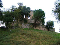 Restes del Castell de Fitor o d'Esparreguera