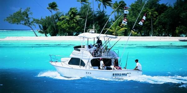 Bora bora things to do in bora bora tourist destinations for Bora bora fish