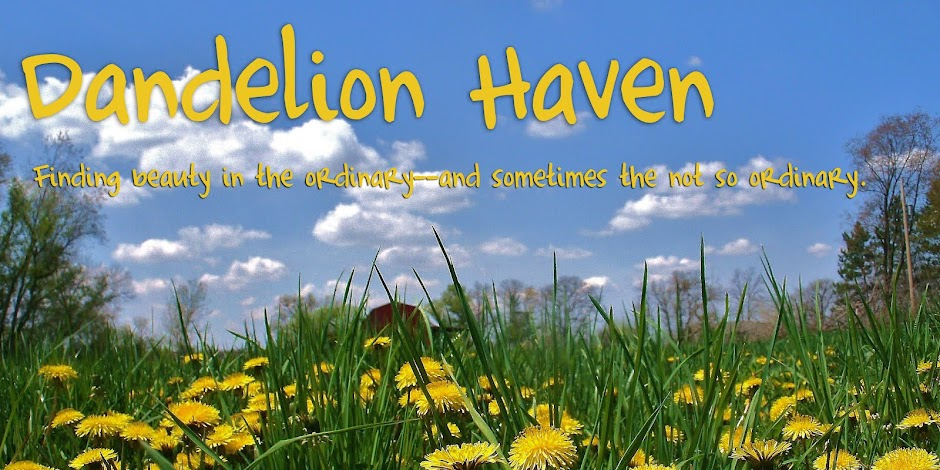 Dandelion Haven