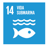 http://www.un.org/sustainabledevelopment/es/oceans/