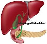 Gall Bladder Problems