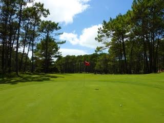 cancha de golf cariló, green