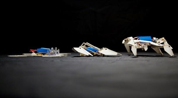 Conheça o robô que se abre como origami (com video)