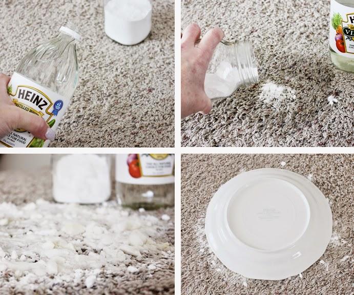 Vyčistite škvrnu od zvieracieho moču bez drhnutia