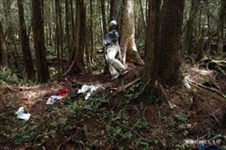 """İntihar ormanı: """"Aokigahara"""""""