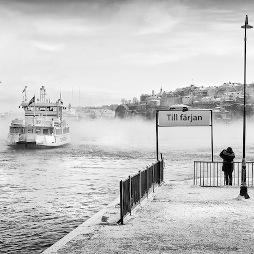 Чёрно-белый мир Nils Erik Larson