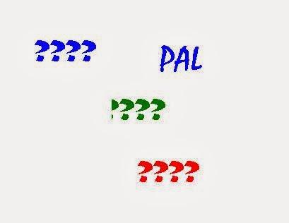 secret pal questionnaire