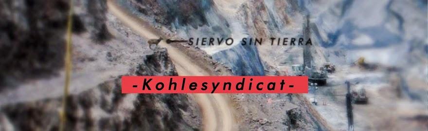 KOHLESYNDIKAT – CALACA E.V. U. BERGBAU COLOMBIA - Straßenumzug 2014 - Berlin