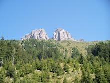 Paradiso dei cacciatori Val Zanchetta