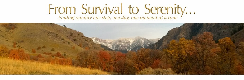 From Survival to Serenity