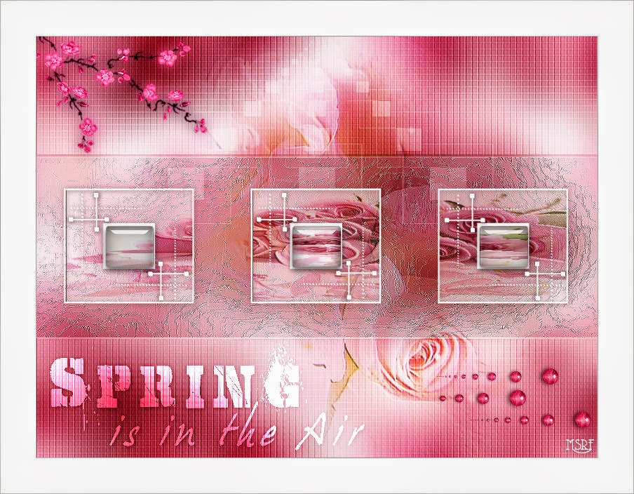 Spring is in the air   AUA Language Center  Facebook