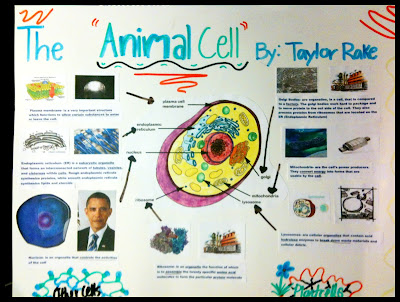Pitottis Panther Page Cell Project Due Friday