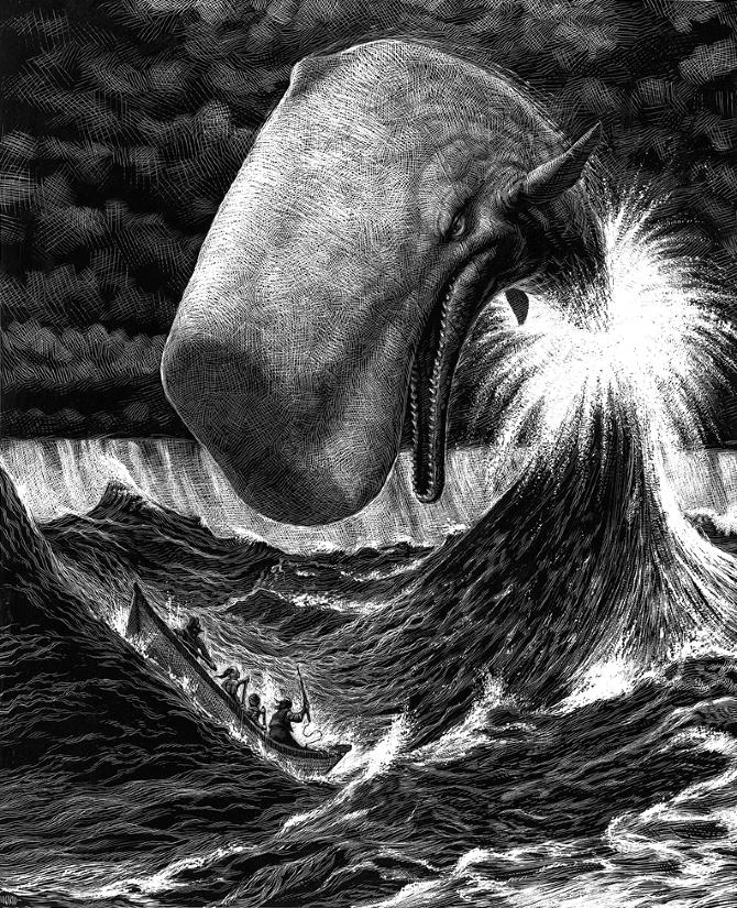 01-Whale-Ricardo-Martinez-Wild-Animals-inside-Scratchboard-Drawings-www-designstack-co