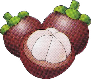 mangosteen animation
