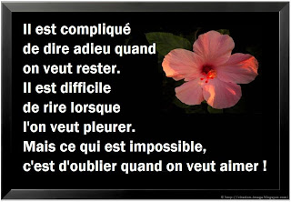 Belle citation triste