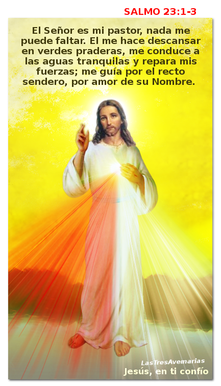 divina misericordia salmo 23 el señor es mi pastor