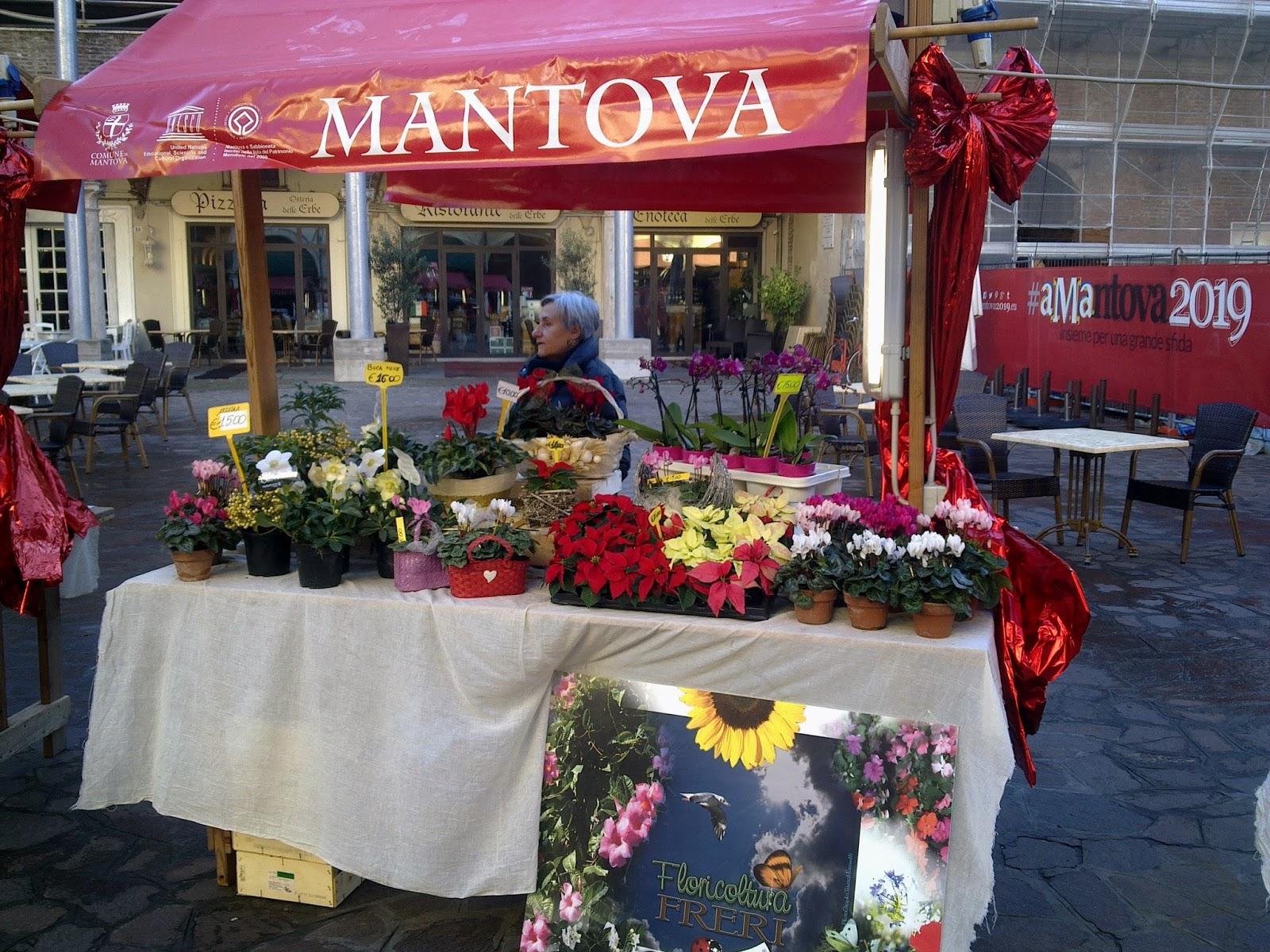 floricoltura freri i nostri stand ai mercatini di natale