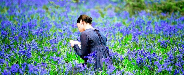 http://perezosa69.blogspot.com.es/