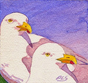 "Seagull Pair at Pemaquid Point - 1 of 2 - Watercolor ""5 x 5"""